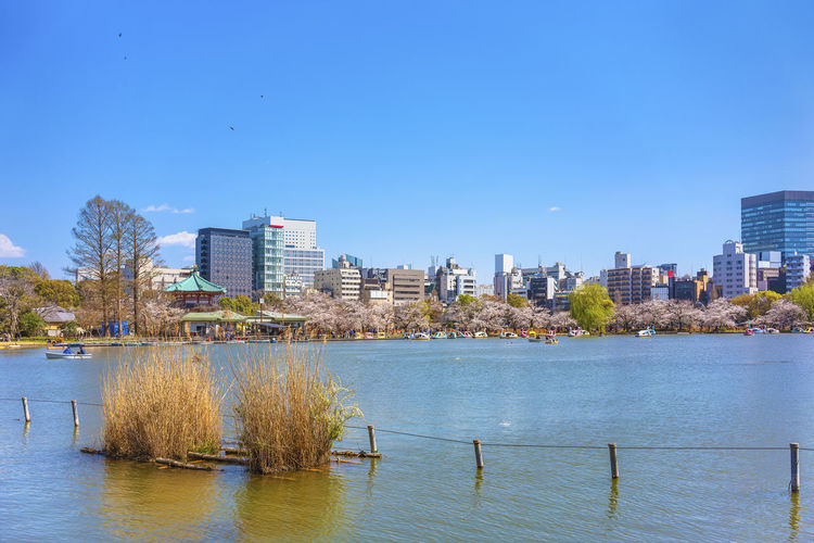 River and buildings against blue sky