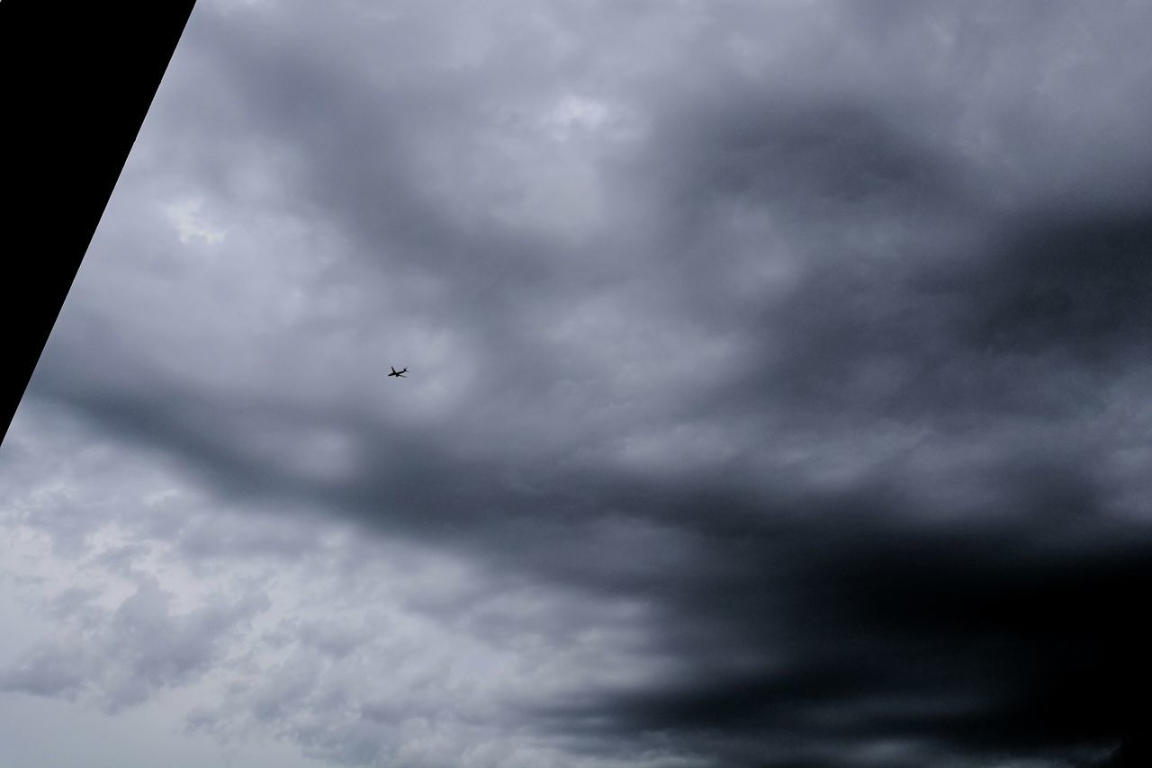 cloud - sky, sky, flying, cloudscape, weather, nature, mid-air, low angle view, storm cloud, bird, day, one animal, animal themes, outdoors, no people, sky only, scenics, animals in the wild, beauty in nature, spread wings