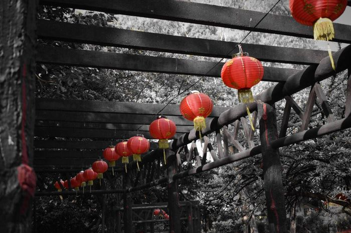 Paper lanterns. 🏮⛩ Chinese Lantern Luneta Park RizalParkPhilippines RizalPark Philippines Nikonphotography NIKON D5300 Travel Photography Manila
