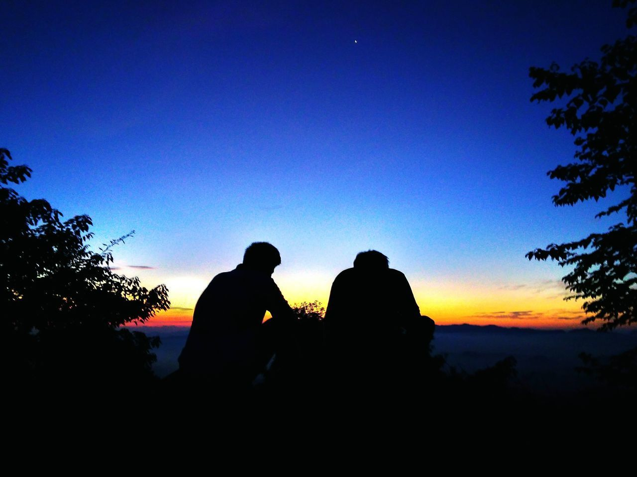 silhouette, two people, togetherness, love, clear sky, real people, men, sunset, sky, bonding, nature, leisure activity, beauty in nature, outdoors, low angle view, tree, scenics, blue, sitting, women, day, friendship, people