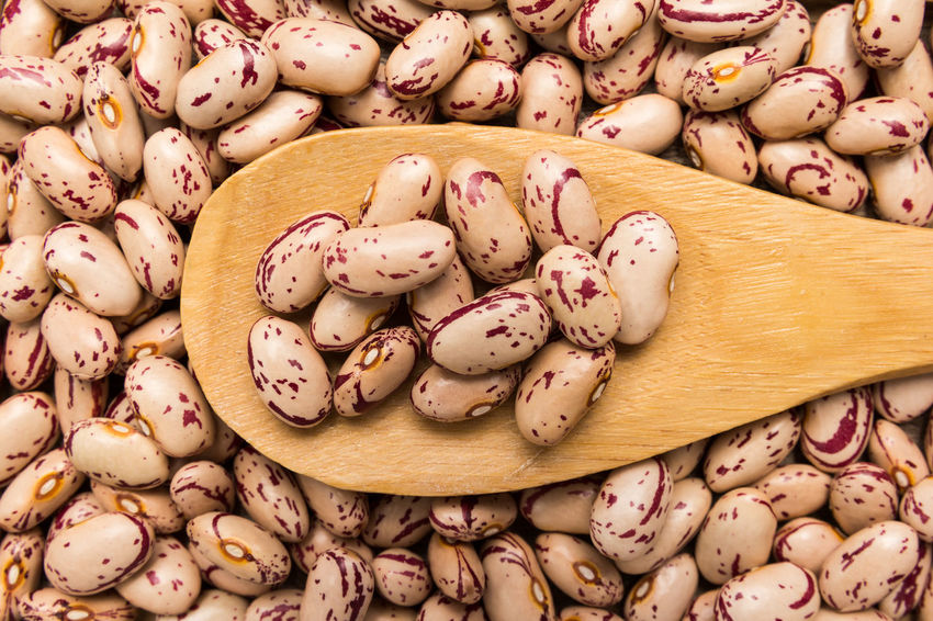 Sugar Bean Close-up Day Food Food And Drink Fragility Freshness Healthy Eating Indoors  No People Pink Color