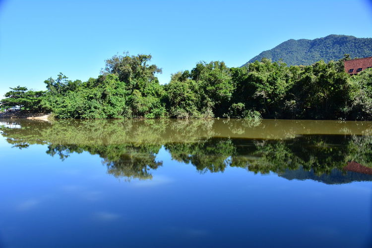 Prumirim River Ubatuba Prumirim Beach Atlantic Forest No Clouds In The Sky Reflections Standing Water Reflection Lake Tranquil Scene Calm Idyllic Scenics Tranquility Lakeside Lakeshore Reflecting Pool Symmetry