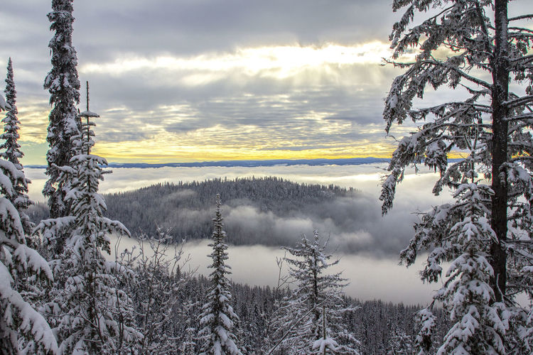 Above the Clouds A New Perspective On Life Beauty In Nature Tranquil Scene Cloud - Sky Winter Cold Temperature Snow Covering Fog Above The Clouds A New Perspective On Life Capture Tomorrow EyeEmNewHere 2018 In One Photograph Stay Out The Creative - 2019 EyeEm Awards The Great Outdoors - 2019 EyeEm Awards