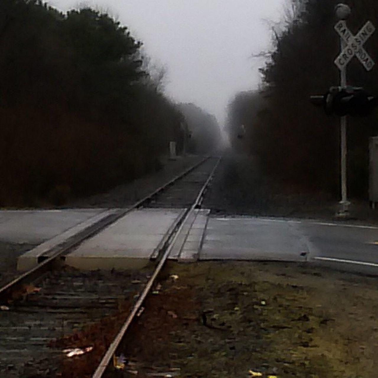 transportation, railroad track, weather, rail transportation, no people, outdoors, fog, day, tree, nature, sky