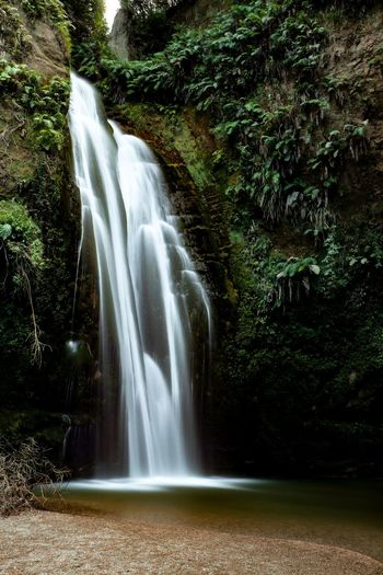 Beauty In Nature Blurred Motion Day Environment Falling Water Flowing Flowing Water Forest Land Long Exposure Motion Nature No People Outdoors Plant Power In Nature Rainforest Rock Scenics - Nature Tree Water Waterfall