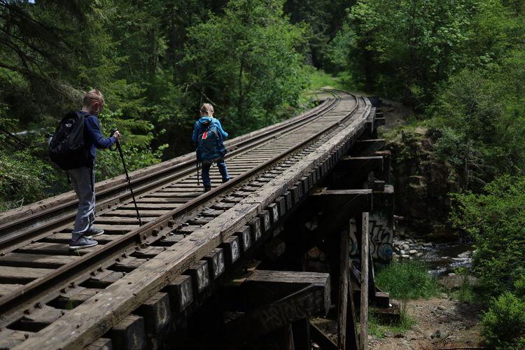 People on railroad tracks amidst trees