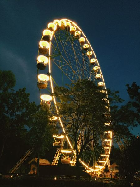 Ferris Wheel Arts Culture And Entertainment Amusement Park Ride Tree Amusement Park Illuminated Sky Outdoors Low Angle View No People Night