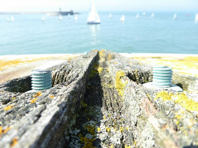 From My Point Of View Dunlaoghaire Sunny Day Haze Weathered Wood Wooden Texture Decay Textures And Surfaces Bolts Moss Sailing Sailboats Part Of Lighthouse Fixture Threads Sails The Great Outdoors - 2016 EyeEm Awards The EyeEm Collection