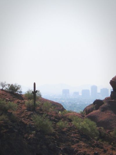 Nature Outdoors Sky City Beauty In Nature No People Day Cityscape CamelbackMountain Weeds Sand Nature Cactus Desert Rocks Desert Beauty Desert Outdoor Outdoor Photography Beauty In Nature Smoggy Arizona Desert