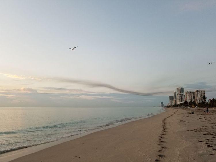 Beach Sand Coastline Landscape Travel Destinations Water Tourism Nature Morning Atlantic Ocean Hollywood Beach FL Miami FL Usa 🇺🇸☀️ Outdoors