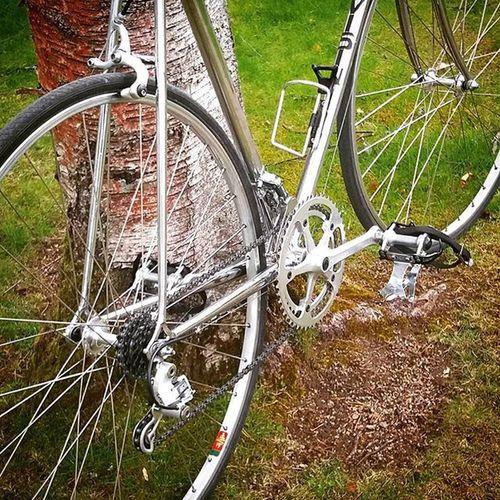 Why paint 😨, nickel works fine... or? Nickelplated Nopaint Mavic Miche Vittoria Italianstyle Fahrrad Fashionista Luggedsteel
