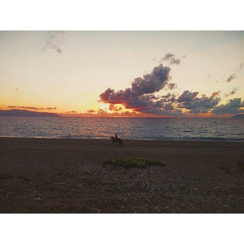 I really want to do this someday! Horsewalking Sunset Sundown Goldenhour Instaoftheday Picoftheday VSCO Vscocam Milazzo Instamilazzo Sicily Italy Instaitaly Ig_italy Ig_europe Landscape Skyporn