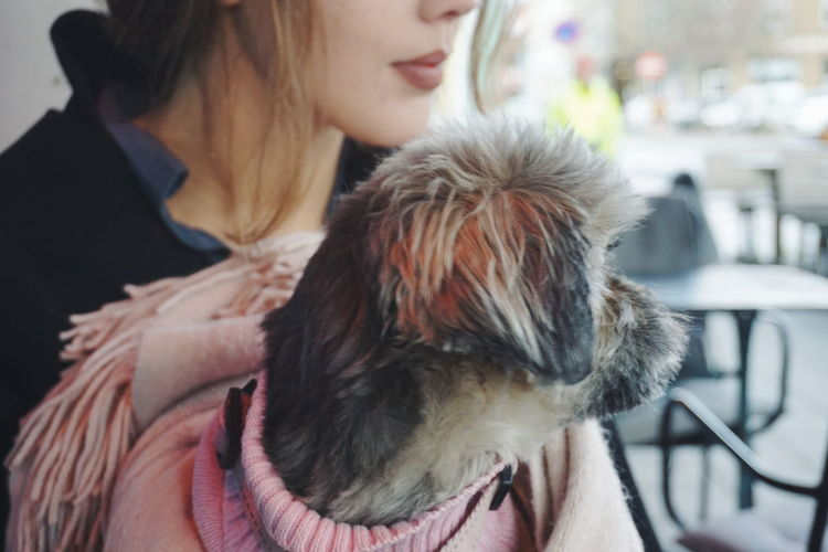 Midsection Of Woman With Dog At Cafe
