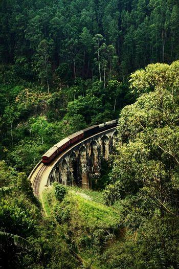 Nine Arch Bridge Ella Sri Lanka Train