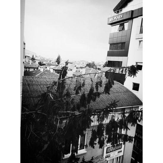 Raining. ☔ ☁ Nowplaying Tom Odell - I think it's going to rain today. Listening Music Love sad tom odell raining nice weather kayseri yurt retrica candycamera white black song