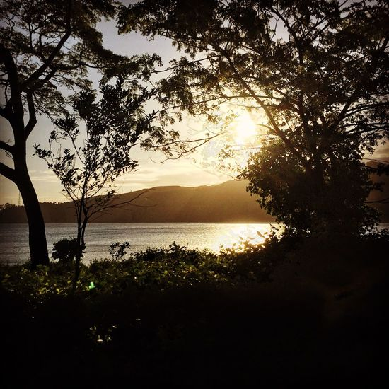 Hello World Candid ListeningToTheEarth💙 Fiji Photos Fiji Fijisunset Nature Photography Travel Photography