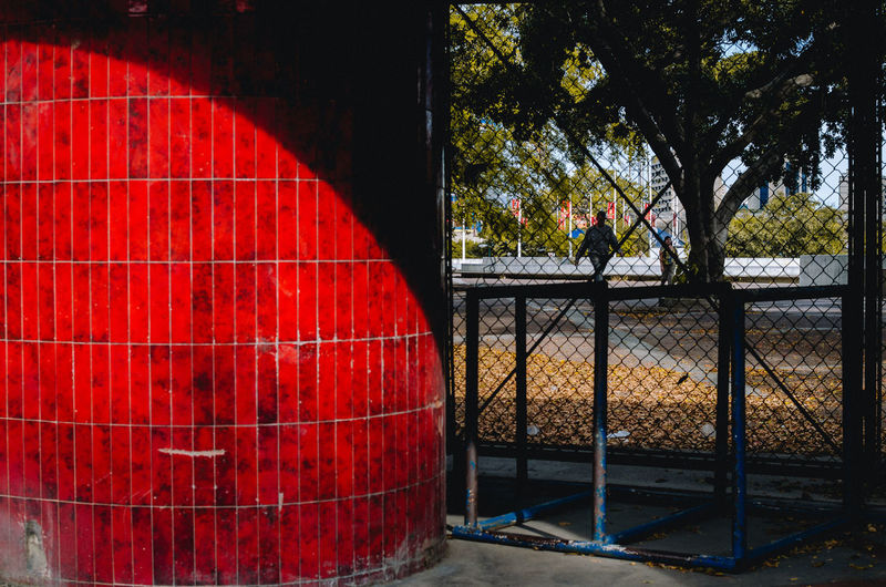 Colores del Solsticio de Invierno Solsticio De Invierno Tree Plant Red Fence Boundary Barrier Day Nature Real People Barrel Cylinder Outdoors Safety Architecture One Person Protection Incidental People Container Land Security Winemaking Winter Solstice Capture Tomorrow Streetphotography The Art Of Street Photography