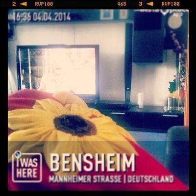 :D InstaPlace Test Bensheim