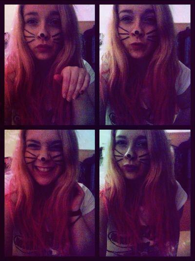 I'm A Cat :)