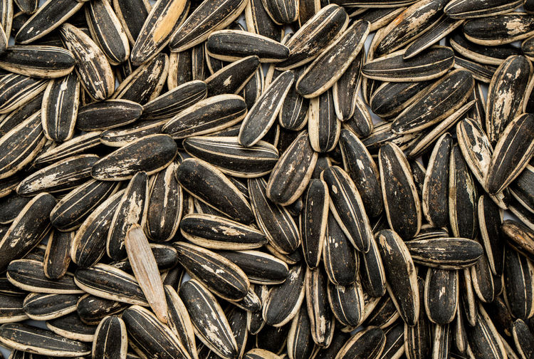 Abundance Backgrounds Black Color Brown Close-up Design Food Food And Drink Full Frame Heap Indoors  Large Group Of Objects Nature No People Pattern Seed Still Life Sunflower Seed Textured  Wellbeing