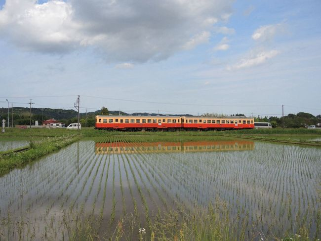 Nikon P7700 Local Railway 小湊鉄道 Rice Paddy