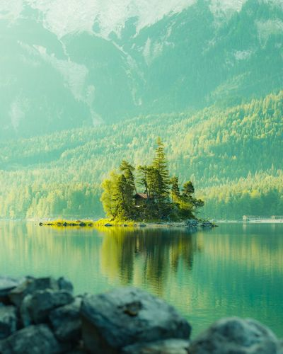 Hello beauty Water Tree Plant Beauty In Nature Scenics - Nature Lake Nature Tranquil Scene Idyllic Green Color No People Mountain Tranquility Reflection Growth Day Outdoors Land Coniferous Tree