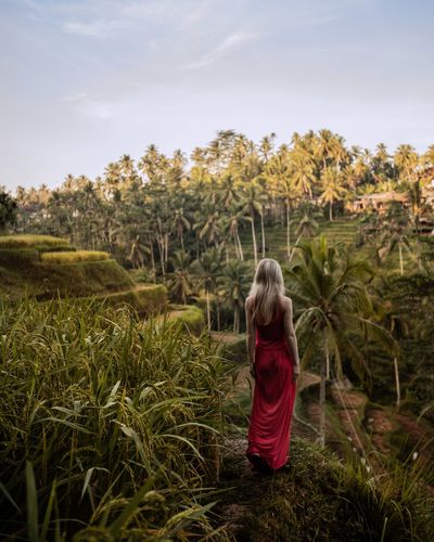 Paddy Fields Bali, Indonesia Baliphotography Canon 6d Mark II Canon Rural Scene Agriculture Women Rear View Field Long Hair Crop  Social Issues Sky Landscape Terraced Field Rice Paddy Bali The Traveler - 2018 EyeEm Awards The Portraitist - 2018 EyeEm Awards The Still Life Photographer - 2018 EyeEm Awards The Photojournalist - 2018 EyeEm Awards The Great Outdoors - 2018 EyeEm Awards The Creative - 2018 EyeEm Awards The Fashion Photographer - 2018 EyeEm Awards EyeEmNewHere