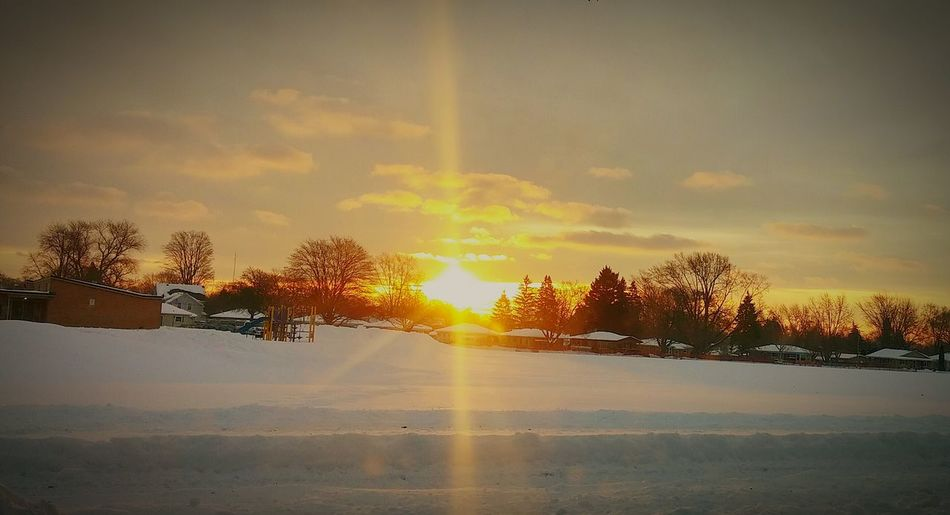 Colour Your Horizn Sunset Nature Sunlight Sky Tree Outdoors Beauty In Nature Scenics Winter Sun
