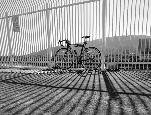 Black & White Black And White Photography Cycling Around Cyclingphoto Road Bike Shadows Shadow And Light