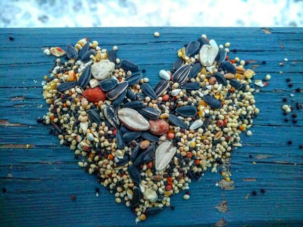 Water Sea Food Outdoors Nature Large Group Of Objects Sky Day No People Clam Backgrounds Illuminated Beauty In Nature Nature Blue Solitude Bird Birdseed Heart Seeds