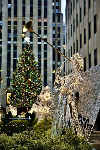 View of christmas tree against building in city