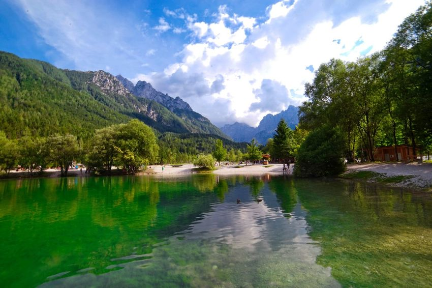 Waterfront in the Slovenian alps Slovenia Water Reflections Alps Beauty In Nature Cloud - Sky Day Lake Landscape Mountain Mountain Range Nature No People Outdoors Reflection Scenics Sky Slovenian Alps Tree Water Waterfront