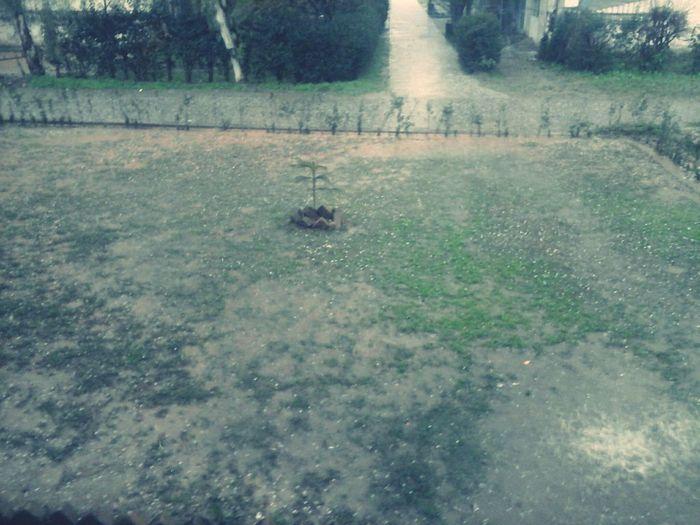 Rainy Days☔ I Love Rainy Days☔