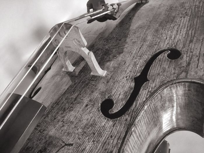 Close-Up Of Double Bass