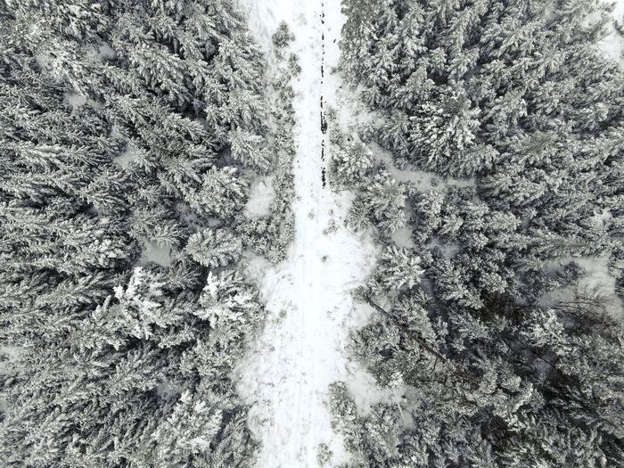 Snow. Germany