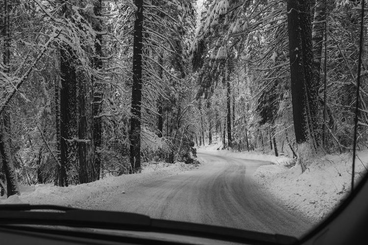 Road amidst trees seen through car windshield during winter