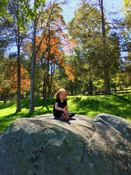 Childhood Nature Beauty In Nature Kid Girl readhead Sitting Autumn Tree Wireless Technology Full Length Casual Clothing One Person Connection Day Technology Young Women Leisure Activity Park - Man Made Space Only Women One Woman Only Outdoors Women Relaxation Adult