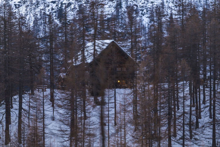 Chalet Alpedevero Alps Beauty In Nature Chalet Crampiolo Forest Mountain Mountains Nature Nature Nature Photography Nature_collection No People Outdoors Scenic Scenics Snow Snowing Tranquil Scene Tranquility Tree Tree Area Trees Wooden House