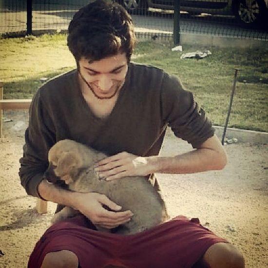 Sokaktan bir can Cute Puppy