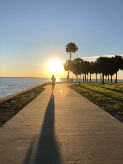 Run to the sun Tree Sunset Sunlight Shadow Sea Beauty In Nature Nature Silhouette Real People Beach Tranquil Scene Sun Water Tranquility Scenics Outdoors Full Length Sky Vacations Grass