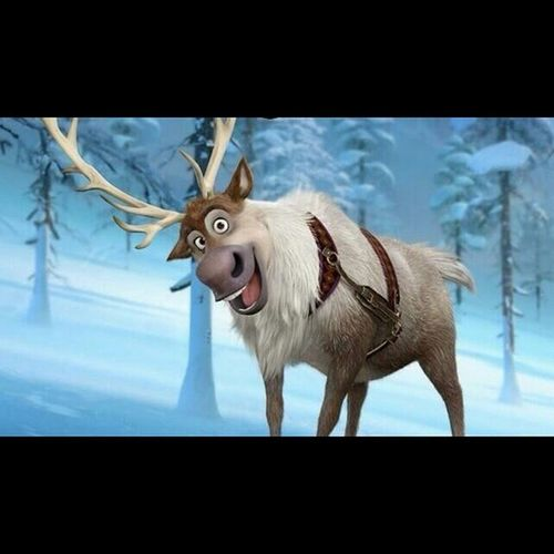 SVEN! Bucketlist Apiceveryday Day103 Frozen sven