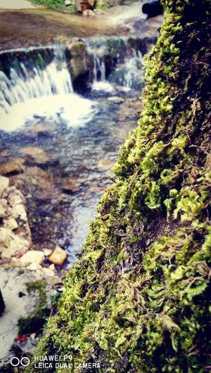 Natura incontaminata! Isernia Acqualimpida Castelpizzuto