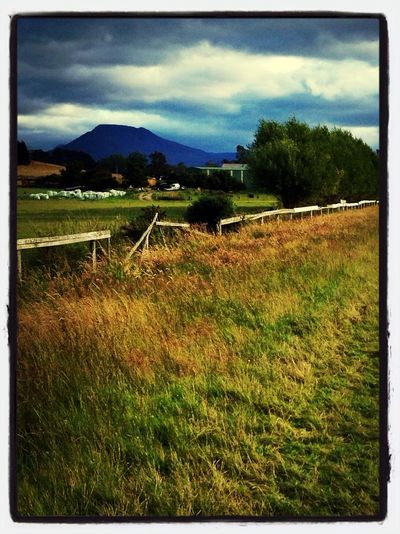 Rural Scenes Countryside Tasmania Ordinary Day