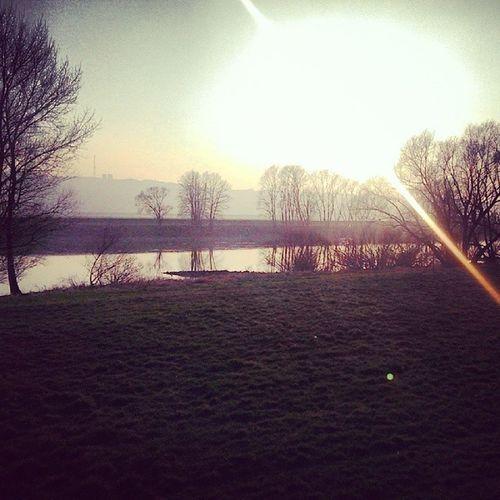 Radebeul Elbe River Altk ötschenbroda Sun