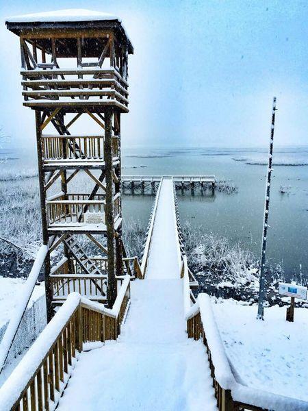 Gölyaka Eftenigolu Kar Snow ❄ Dogaharikasi Saheser First Eyeem Photo
