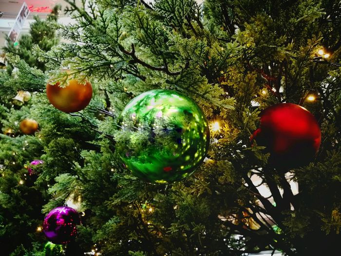 Tree Celebration Christmas No People Shiny Christmas Decoration Green Color Bauble Christmas Ornament Growth Outdoors Nature Close-up Day