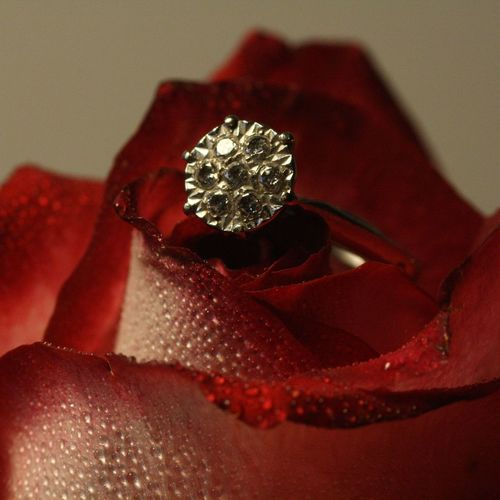 """ I do "" Romance Love Marruage Wedding Proposal Beauty Red Rose Eternal Love Passion Always Diamond - Gemstone Jewelry Wealth Luxury Red Gemstone  Precious Gem Diamond Ring Day Close-up No People"