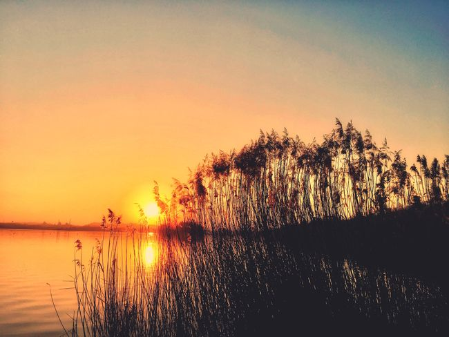 Sun Nature Outdoors Beauty In Nature Tranquil Scene No People Sun Sky Water Lake Reflection Sunset Silhouette Scenics Landscape EyeEm Nature Lover From My Point Of View in Brianza