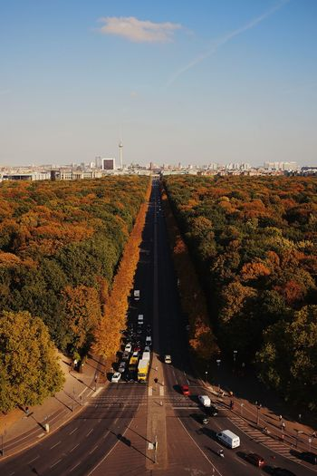 High angle view of road by trees against sky