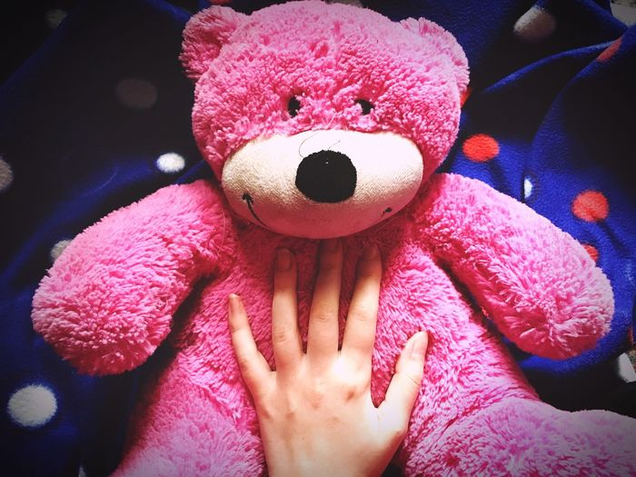 Always Be Cozy Toy Stuffed Toy Teddy Bear Pink Color One Person Real People Human Hand Childhood Human Body Part Lifestyles Close-up Indoors  Day People Comfy  Home Fair Skin Hand Girly Blanket Cozy Warm Feeling Lieblingsteil
